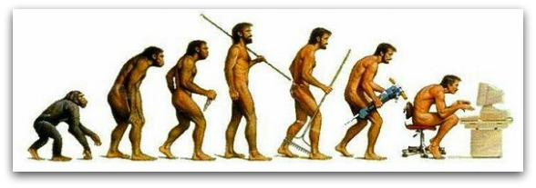 funny evolution drawing