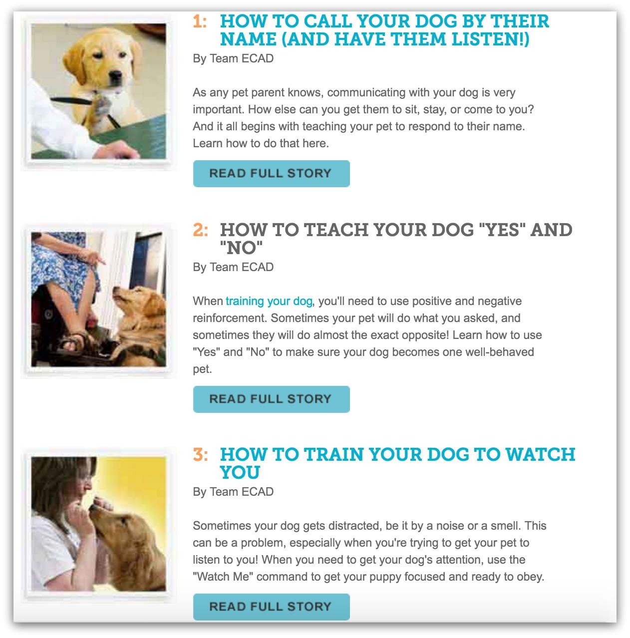 top dog training blogs
